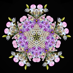 The Wishing Star (Cristina Burns) Tags: cristinaburns surrealism contemporaryart mandala foodart flowerdesign fooddesign design interiordesign photoshop stilllife fineart foodphotography
