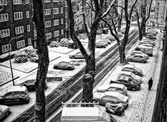 on a snowy day : morning going to work (Le Xuan-Cung) Tags: morning winter urban sun sunlight snow man cold wet hat germany daylight lightsandshadows nikon mood alone citylife streetshots streetphotography atmosphere streetlife streetscene sidewalk nrw drama dortmund bigcity sunnyday goingtowork urbanshots livingingermany lightsanddarks characterstudies onasnowyday nikoncoolpixs52 morningtowork livingindortmund urbandortmund livinginnrw inthecolddays