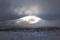 Mountain Light (dougchinnery.com) Tags: winter snow mountains ice scotland tripod leg glencoe birch ankle blizzard rannochmoor