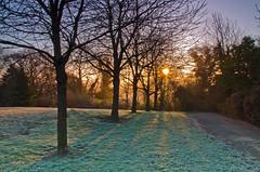 Early morning light. (paul downing) Tags: winter mist ice sunrise nikon soft filters hitech prestonpark stocktonontees 0609 gnd pd1001 d7000 pauldowning pauldowningphotography