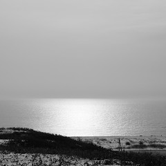 The sea which shines (_kaochan) Tags: sea blackandwhite bw 6x6 monochrome explore panasonicdmcgf1