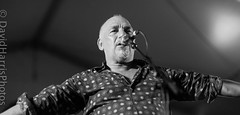 Joe Camilleri & The Black Sorrows (David Harris Photography) Tags: david black festival photography joe harris riverboats echuca sorrows davidharris camilleri joecamilleri theblacksorrows riverboatsfestivalechuca davidharrisphotography