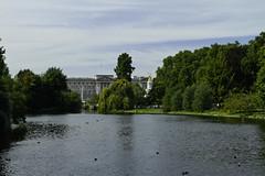 St. James Park (nakedst) Tags: park uk greatbritain travel england london canon pond buckinghampalace gb stjames пруд парк путешествия лондон англия великобритания canoneos7d букингемскийдворец сентджеймс