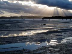 Cockle Bay, 11 January 2011