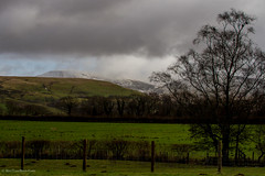 Brecon Beacons National Park (BiteYourBum.Com -) Tags: park red kite station wales carmarthenshire feeding unitedkingdom 350 national pro brecon beacons runner canonef1740mmf4lusm aw redkite lowepro milvusmilvus llanddeusant dyfed canonefs60mmf28macrousm breconbeaconsnationalpark biteyourbum redkitefeedingstation canoneos7d dawnandjim canonspeedlite430exii sigma50500mmf4563dgoshsm biteyourbumcom welshredkitetrust llanddeusantredkitefeedingstation