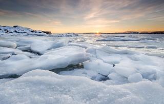 Artic Oslo