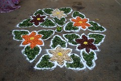 8 (akila venkat) Tags: street art colours patterns bangalore rangoli indianart