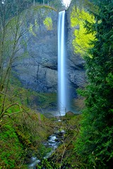 Latourelle Falls (pdxsean) Tags: longexposure nature river waterfall woods columbia falls gorge latourelle nationalscenicarea