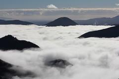 Sea Cloud (Tones Corner) Tags: cloud fog clouds day view vista marlborough nzscene nzscenery