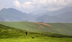 Sentinel, Tibet 2012 (reurinkjan) Tags: nature tibetan racehorse 2012 sentinel brokpa incensesmoke horsefestival   lingkaorpicnic  janreurink tibetanpony tibetanplateaubtogang tibetanethnicity sangchucounty tibet picnictentlargeglinggurcheba landscapesceneryrichuyulljongsrichuynjong landscapepictureyulljongsrimoynjongrimo landscapeyulljongsynjong horseriderskyamiskyamyikyami horseblankettakhep horsebreednamtagyiling famousbreedofhorsefromamdoandmongolianamteling tibetanlandscapepicture amdogyarongfareasttibet  racehorsesrtargyugsgtongtagyuktong horseracingrtargyugstagyuk horseridechibspachibchippanchip horsemanshiprtathoglusrtsaltatokltsel oneskilledinhorsemanshiprtaskyapatakyapa rideonhorsebackmizhigrtalamizhiktala incensetreehimalayanjuniperbdugsposshingdukpshing incensegoddessbdugsposmadukpma burningincensebdugsposdukp paperwindhorse horsrta racehorses rtargyugsgtong tagyuktong bodrigs rgyugrtagyukta oneskilledinhorsemanship rtaskyapatakyapa sposdudpd prayerflaglungtarlungrtalungta horsesandpackanimals takhel