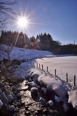 A river runs through it (Alistair Hamill) Tags: sun snow river jour burst contre antrim glens glenariff