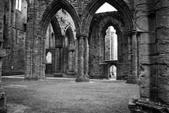 "Tintern Abbey • <a style=""font-size:0.8em;"" href=""http://www.flickr.com/photos/32236014@N07/8636378080/"" target=""_blank"">View on Flickr</a>"