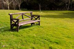Bench (entangleone) Tags: bench scotland monteviot