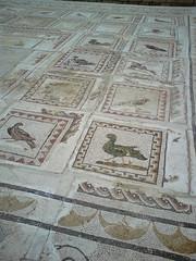 Birds Mosaic - Itlica (eyair) Tags: birds sevilla spain ruins roman mosaic seville andalucia andalusia italica romanruins santiponce itlica ashmashashmash