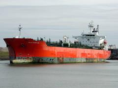 VALLE DI NERVION (Dutch shipspotter) Tags: tankers merchantships