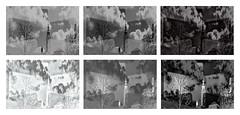 Kimono Sky Himmel ber Stift Altenburg  - 6 Variations monochrom black and white schwarzwei - Schnittmuster, Work in Progress Verlauf Paper Pattern Cut Sheet Tapisserie (hedbavny) Tags: altenburg stiftaltenburg stift kloster kirche church heilig turm tower kirchturm himmel sky cloud wolke baum tree roof dach leier leiermann schnittmuster sewingpattern paperpattern cutsheet design kimono gewand clothes kaftan sew sewing nhen schablone passepartout stencil abweichung variation variante variieren abweichen weis white black schwarz blackandwhite schwarzweis antonius padua holz natur nature konkret concrete abstract abstrakt abstraktion hedbavny ingridhedbavny wien vienna austria sterreich heiligerantonius antoniusvonpadua niedersterreich loweraustria