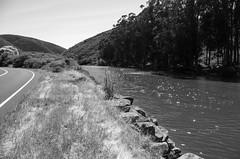 CAlif Side Ways (SteveNakatani) Tags: northerncalifornia california ca roads water landscape monochrome blackandwhite hwy1 highway 1
