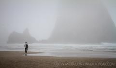 Foggy Haystack Rock (justin_anderson_PNW) Tags: haystack rock ocean beach cannon oregon cascadia foggy waves shorebreak atmospheric