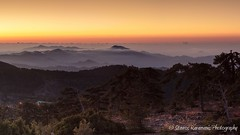 sunrise from Troodos (stavros karamanis) Tags: sunrise cloud fog mist misty mountain mountaintop mountainsite morning tree depthfield depth canonphotography canonusers canon dslr t3i ef35350mmf3556lusm troodos cyprus panoramic pano