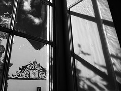 Henry Peckham's monograph (Caroline Oades) Tags: monograph henrypeckham window oneroomstewardsview windowseatview lookingout gate art gallery shadow welcome entrance queenannetownhouse modernart england westsussex chichester pallanthousegallery
