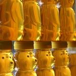 Golden Honey Harvest thumbnail