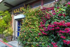 Harry_30622a,,,,,,,,,, (HarryTaiwan) Tags:            changhua     harryhuang   taiwan nikon d800 hgf78354ms35hinetnet adobergb