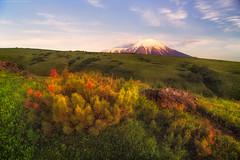 Kamchatka sunsets (Maxim Slastnikov) Tags: russia volcano travel grass sunset alone view mountan trees clouds trekking explore nationalpark