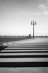 """zebra"" (Joszhua) Tags: wwwjahpicturecom jahpicture architecture bnw bw blackandwhite monochrome monochrom monochromatic madeira funchal street streetphotography grey strasse promenade vacation chill relax break schwarzweiss"