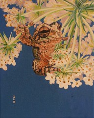 Subtle  Frog (Ian Lee Oliver) Tags: flowers blue sky animal cool paint good painted amphibian frog toad ribbit subtle ilo