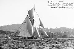 Les Voiles de Saint-Tropez (Marc de Delley) Tags: moon france port magazine boat photo foto yacht sails beam pure yachting ramatuelle sainttropez фото voiles provencealpescôtedazur سان סן франция צדיק sainttrope 페 생 прованс santtropetz сентропе サントロペ marcdedelley сентрапэ σαιντροπέ сэнтрапэ სენტროპე 圣特罗佩 تروبيه סיינטטראָפּעז 트로 טרופז सैंट ट्रोपेज़ sanctustorpetius טרופאז סאינטטרופז 트로페 سينتتروبز sttropezsainttropezсантропеpampelonne fashionbrandsouthoffrancefrenchrivieratropezmarcdedelleydedelleydelleyfrancesummerlovephotoofthedayinstafotofollowmeseamagazineinstagoodmodelshootingphotophotographerpresseinstalikepureparislondonmiamidubaimoscowibizanewyork