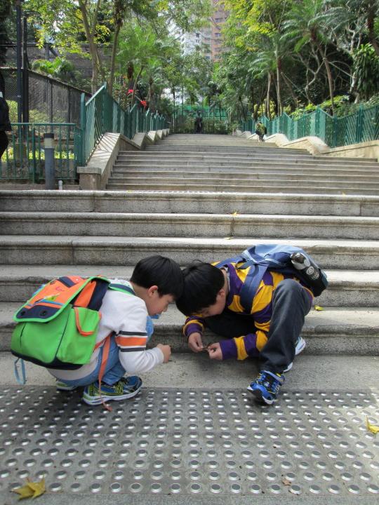 香港動植物公園010