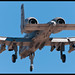 A-10C - DM - 80-0270