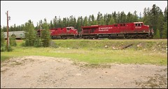 Slow Moving Westbound (greenthumb_38) Tags: railroad canada reunion train rockies canadian alberta locomotive canadianpacific cp 2012 canadianrockies jeffreybass august2012 moseankoreunion