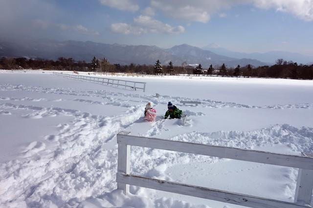 雪がモフモフ過ぎてソリごと埋没