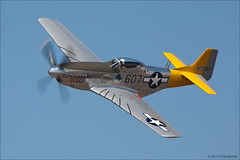P-51D Mustang (Tom_Morris Photos) Tags: airplane fighter wwii mustang dolly warbird p51 p51d northamerican spamcan planesoffamemuseum n451tb