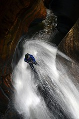 Go with the flow (VernsPics) Tags: park blue mountains water sport flow waterfall with go canyon adventure national abseiling canyoning claustral abseil