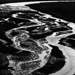 La tarde del unicornio (Memo Vasquez) Tags: blackandwhite bw blancoynegro sonora mxico ro river landscape paisaje bp unicorn unicornio memovasquez sanpedrodelacueva mygearandme mygearandmepremium mygearandmebronze latardedelunicornio
