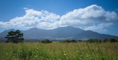oahu landscape (Natalie_Ward) Tags: mountain mountains landscape hawaii photo oahu sunny olympus e420 olympuscamera 1442mm olympuse420 1442mmlens natalieward nataliewardphotography