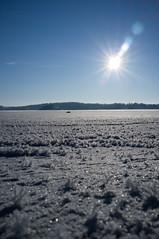 Frost Flowers (MikeHarnetty) Tags: blue sea sky sun ice frozen frost crystals sweden stockholm flare seaice hoar saltsjöbaden x100 frostflowers