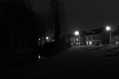 Van Raemdonckpark, Kortrijk, Belgium (bm^) Tags: city trees urban blackandwhite bw white black tree nature night zeiss bomen nikon belgium belgique zwartwit belgi boom westvlaanderen carl van zwart wit parc stad kortrijk blackwhitephotos planart1450 d700 zf2 planar5014zf nikond700  westernflanders raemdonckpark