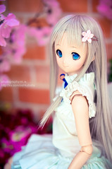 DSC01781 () Tags: dolls custom volks menma dollfiedream anohana meikohonma