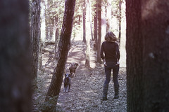 (Jeannette Rose) Tags: selfportrait dogs forest spring woods puppies path
