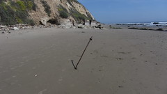 IMG_7821 iron post mid east haskell beach (ceztom) Tags: california rescue beach santabarbara march marine pacific east 23 geology sealion sandpiper channel bluff goleta ellwood shorebird haskell bacara 2013