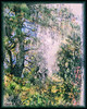 Garden of Eden (gailpiland) Tags: trees texture pine forest photoshop garden painting landscape eden soe hypothetical autofocus thegalaxy flickraward theunforgettablepictures theperfectphotographer thebestofday sharingart gailpiland ringexcellence allnaturesparadise netartii flickrstruereflection1 rememberthatmomentlevel1 rememberthatmomentl1
