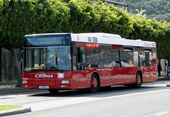 Gibraltar, Winston Churchill Avenue 14.04.2013 (The STB) Tags: man bus gibraltar calypso autobs citibus nl262 calypsotransportlimited
