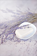_MG_9146 (_qll) Tags: wood stilllife nature still bath lavender product lavendel