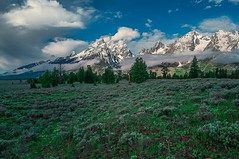 Light Around The Tetons (Jerry T Patterson) Tags: park camping autumn sunset camp horse cloud