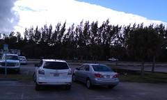 January 17, 2013 (osseous) Tags: parkinglot haulover 2013january
