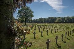 War Cemetery Ysselsteyn (thomas druyen) Tags: ysselsteyn soldatenfriedhof holland grab grber kreuz kreuze mahnung mahnmal erinnerung bume wiese friedhof venray limburg europa krieg tod