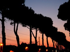 On the Run (Psychic Readings) Tags: trees sunset sea italy night contrast skies shadows outdoor special pines psychedelic